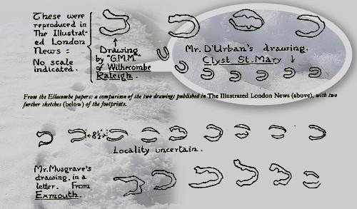 Supuesta foto y dibujo de las huellas