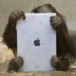 Orangután con iPad